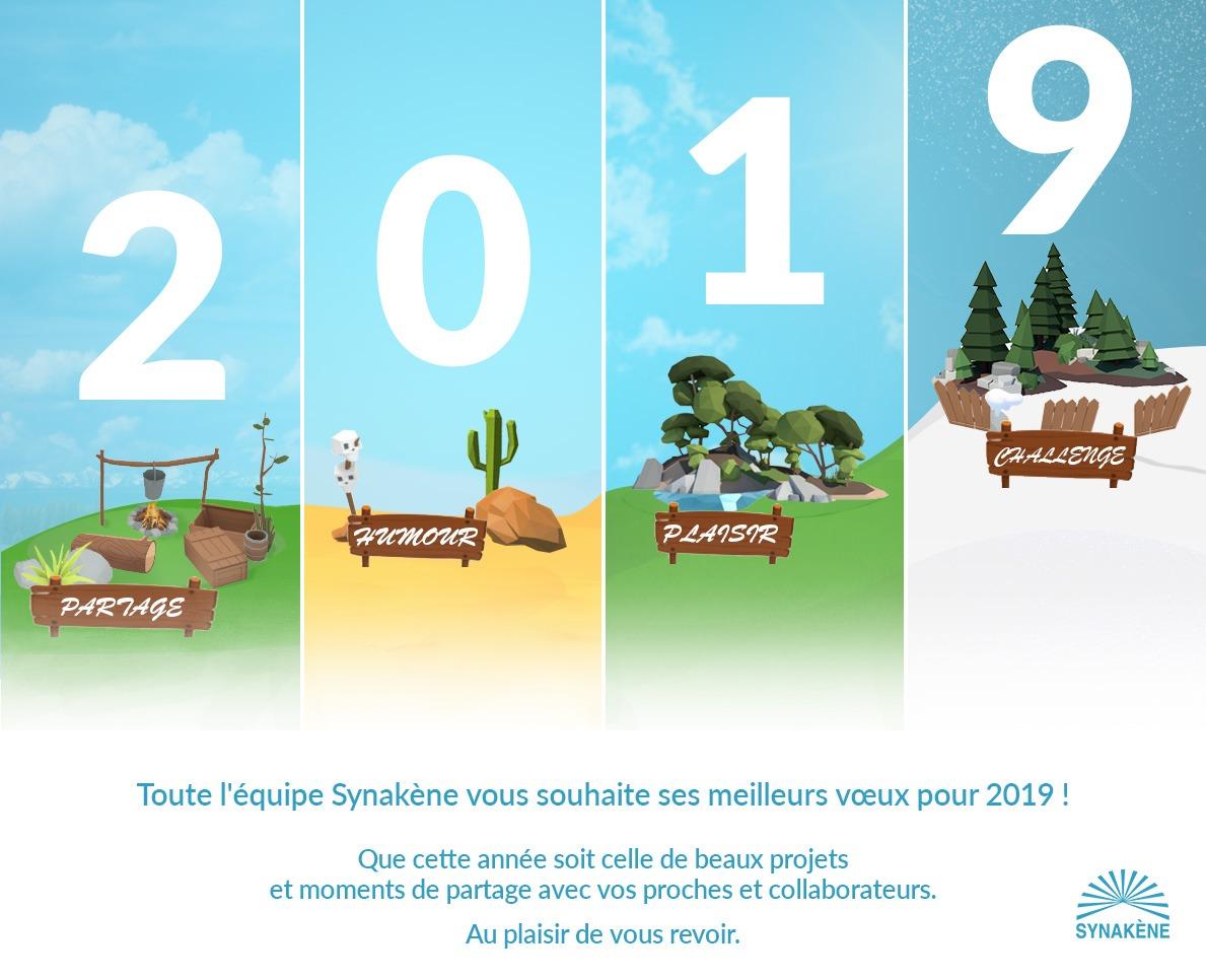 Synakène vous souhaite ses meilleurs voeux pour 2019 !